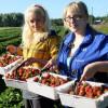 Українські працівники у Польщі створять свою профспілку