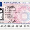 Українці з Франції просять спростити обмін водійських посвідчень на французькі